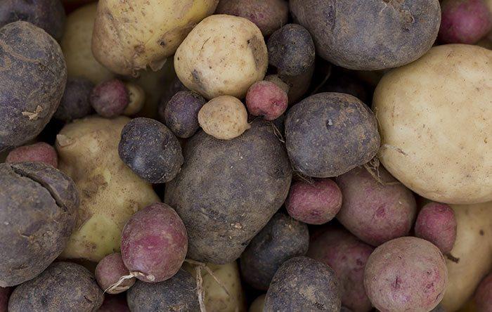 Chef Ayinde's Black and Yellow Breakfast Potatoes
