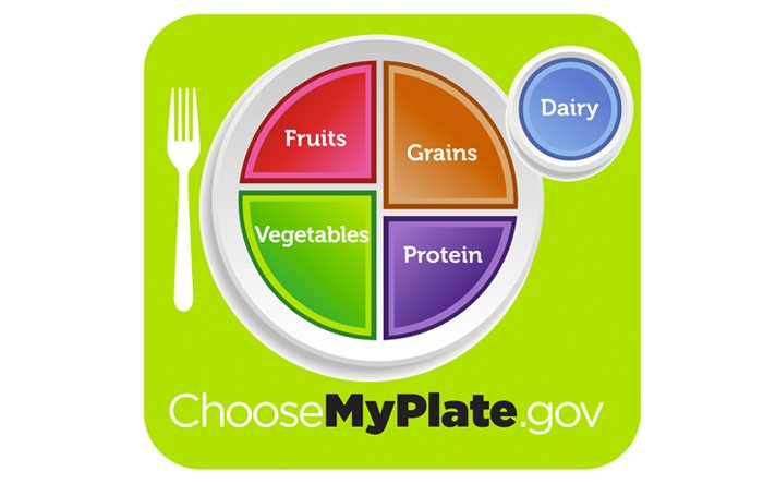 Usda S New Food Pyramid Icon My Plate Not For Every