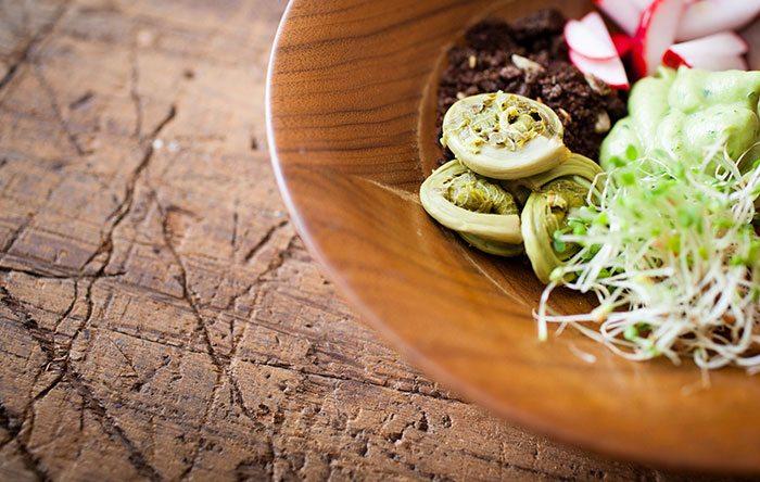 Jared Koch: Healthy Food, Healthy Life