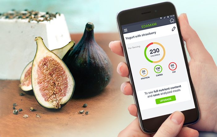 Edamam Nutrition Wizard on mobile phone
