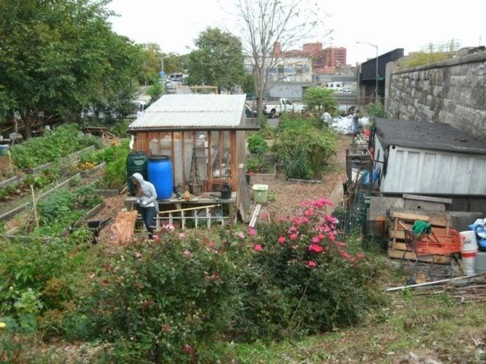 la-finca-urban-farm
