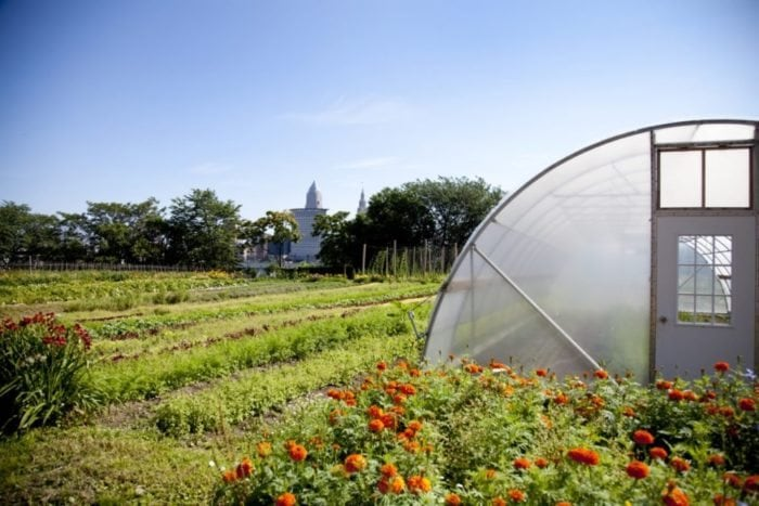 ohio-urban-farm