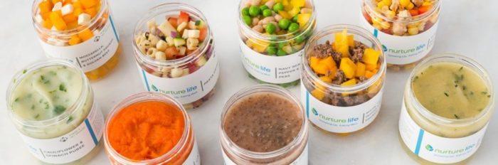 Nurture baby meal kit spring purees