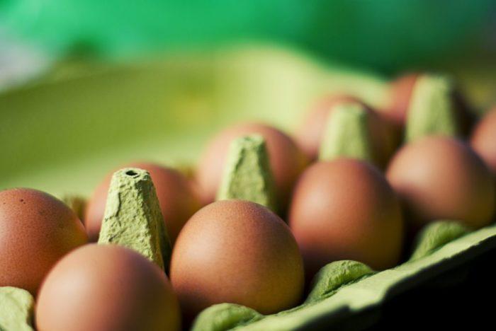 eggs-photo