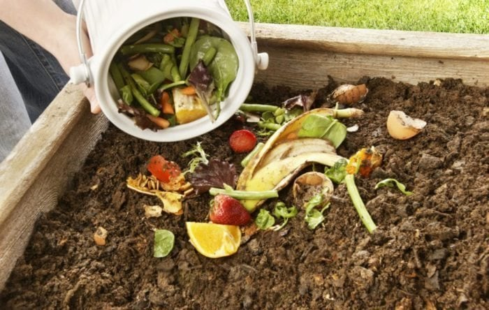Pouring food scraps into a compost pile